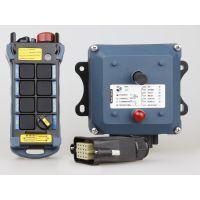 厂家供应500米8键可充电行车遥控器DK1-81-9