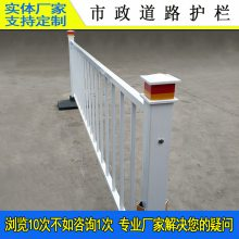城市路侧中间隔离护栏 广州市政防撞栏 茂名人行道扶手镀锌栏杆