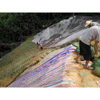 铜仁荒山矿山复绿三水园林专用承接及绿化资材材料草籽草种出售