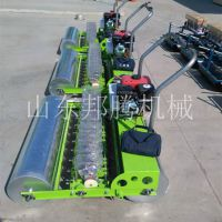 大棚专用播种机 香菜韭菜手推式蔬菜精播机 多功能电动播种机