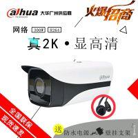 大华300万高清网络摄像头DH-IPC-HFW1325M-I2双灯红外监控摄像机