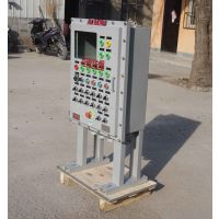 防爆变频器控制配电箱 防爆钢板柜防防非标配电箱定制