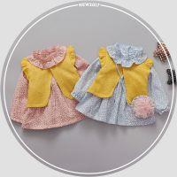 春装新品女童裙子 女宝宝童装小童韩版婴幼儿1-3岁连衣裙一件代发
