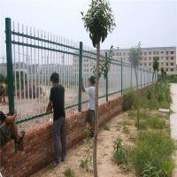 市政工艺护栏 市政防护栏杆 窗口隔离护栏