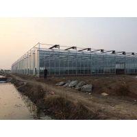 邯郸市温室农业大棚完工图片,邯郸市温室、阳光板温室农业大棚厂家