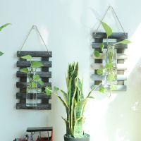美式乡村简约植物水培 壁挂壁饰墙面 创意家居墙上装饰品背景墙