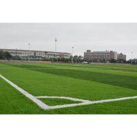 降低 经营性人造草坪足球场地 优世体育 建造成本 因素 基础建造