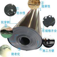 润泽hdpe土工膜厂家 1.0mm沼气池黑膜批发 防渗土工膜施工