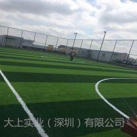 仿真人工草坪地毯施工幼儿园草坪足球场人造草坪厂家直销