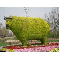 新年19年春节元旦主题雕塑造型 喜迎猪年生肖动物绿雕造型