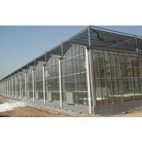 河北玻璃智能温室大棚承接建造厂家团队,河北玻璃温室大棚价格