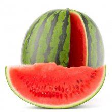 农产品进货-西瓜