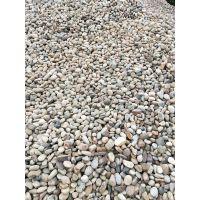 电厂鹅卵石 污水处理鹅卵石 品质可靠 价格优惠