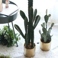 欣雅欧仿真绿植仙人掌仙人柱家居装饰品沙漠植物盆栽商铺陈列