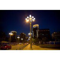 泰格中华灯厂家供应组合景观灯 LED中华灯 可来图定制