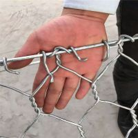 河北护堤六角网 柳河石笼网厂家 河北电镀锌石笼网报价