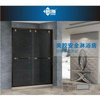 碧海夹胶安全淋浴房一字形不锈钢双移门钢化玻璃门定制