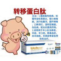 治疗羊痘特效药转移蛋白肽,羊痘怎么预防和治疗