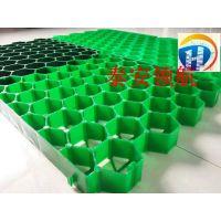 深圳6公分植草格生产基地厂家欢迎您