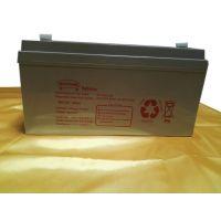美国纳航UPS电源专用蓄电池12V-65AH铅酸免维护蓄电池浙江总代
