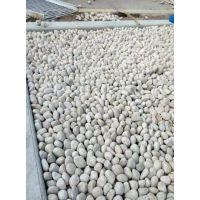 襄阳天然鹅卵石2-4mm生产供应商/变压器鹅卵石/水处理鹅卵石滤料