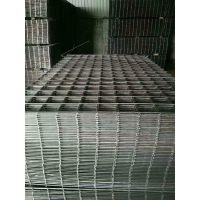 316镀锌电焊网片 不锈钢网片 养殖铁丝网