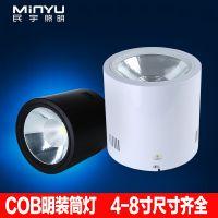 明装筒灯cob圆形免开孔吸顶20w30W40W50瓦大功率商场展厅led射灯
