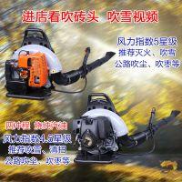 森林扑火工具吹风机 普航手提式轻便汽油吹风机 背负式吹雪机批发