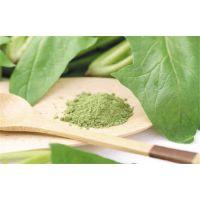 然菠菜优质质食品添加剂菠菜粉 脱水菠菜粉厂家直销