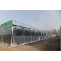 云南红河全自动型育苗大棚温室温度自动调节、内部60型独立基础承建公司