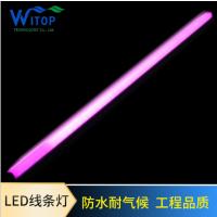 TM1812 幻彩LED线条灯 轮廓灯 户外小功率 12W 24V 内控 8段48珠