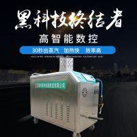 厂家定制24公斤大压力高压蒸汽洗车机 环保节能高压蒸汽清洗设备