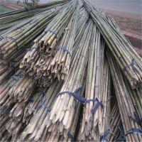 江西京西竹杆直销全国矮化密植苹果项目用的4米小竹竿 发货及时 量大从优