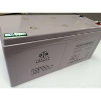 南京双登蓄电池6-GFM-15012V150AH现货