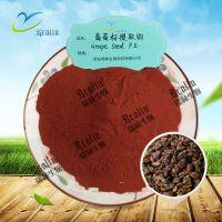葡萄籽提取物 95% OPC 葡萄籽原花青素水溶性好 花青素现货供应
