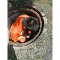 清运排污,废水清淤,道疏通,高压疏通,清洗,清理污水池,清理化粪池,清理工业废水,污水环保处置工程,