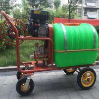 开江县苹果树汽油打药机 不用进地新式打药机 内蒙古喷雾器厂家