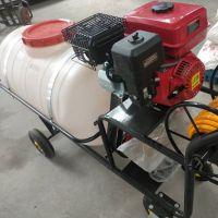 推车式农用喷雾器 手推高压喷雾器批发