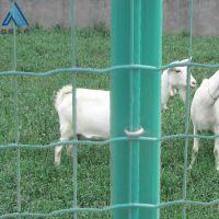农家乐铁网栅栏 鱼塘安全防护围栏