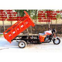 正品隆鑫200风冷动力正三轮摩托车货运爬坡王三轮自卸摩托车