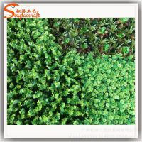 厂家设计仿真植物墙 特色绿植墙装饰 室内装饰背景墙 塑料草批发