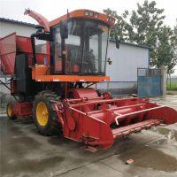 大型养殖场专用玉米秸秆青储收获设备 自走式秸秆收获机 青储机