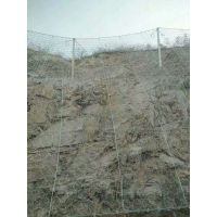安平车间隔离防护网厂家价格 边坡防护网供应