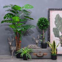 JSC仿真热带雨林植物盆景摆件工艺品家居客厅店铺摆设装饰品盆栽