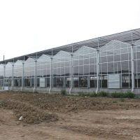 能做玻璃温室大棚出口的温室公司/玻璃智能温室安装出口