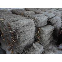 玉米粉条机专业生产 适用玉米淀粉