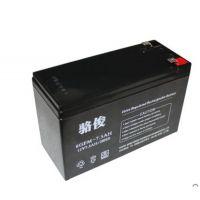 宝鸡蓄电池厂家6GFM100骆俊蓄电池