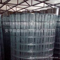 河南郑州铁丝网 内墙外墙保温铁丝网格 驻马店镀锌电焊网厂家