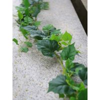 定做仿真绿叶装饰树叶管子植物花藤蔓假花藤条吊顶塑料花藤葡萄常