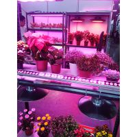 绿鑫补光灯、植物补光灯、植物生长灯、LED补光灯、农艺钠灯、育苗补光灯、温室补光灯